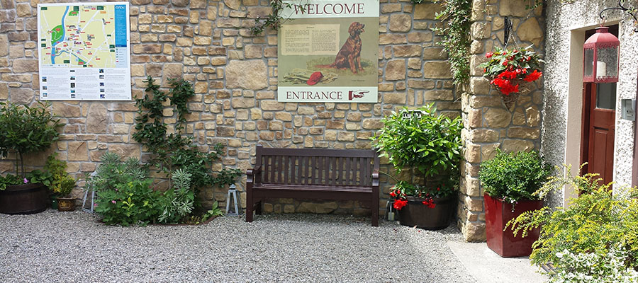Bed and Breakfast Carlow